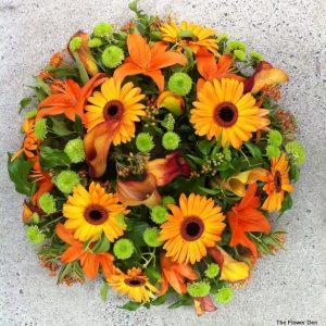 The Autumnal Circular